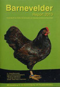 Titelbild Report 2013